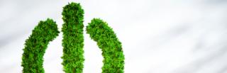 [Livre blanc] Numérique et Transition Ecologique